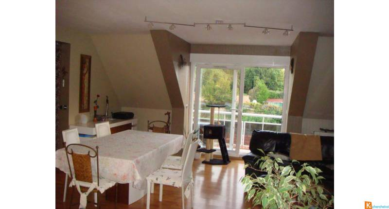 Appartement à vendre Saverne - Saverne