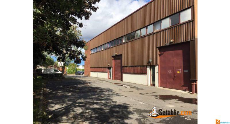 LOCAL PRO 322 m² - Noisy-le-Grand
