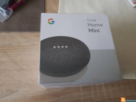 Google home mini couleur charbon