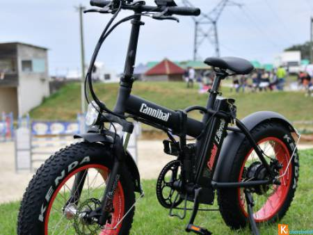 Velo Electrique pliant FAT BIKE 250 w 36volts