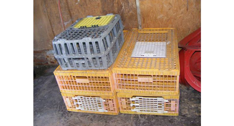 CAGES DE TRANSPORT VOLAILLES
