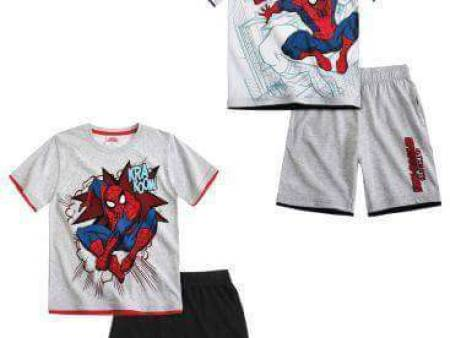 ensemble spider man