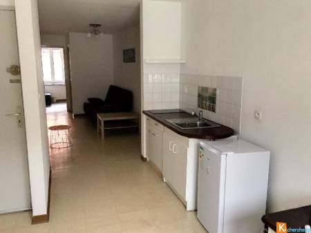 APPARTEMENT MEUBLE F2 43 M2 A MONTAIGUT