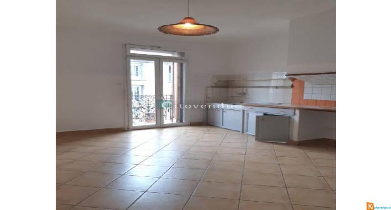 Immeuble 2 appartements terrasses et local commercial - Le Soler