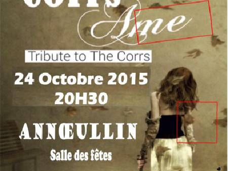 CORRS & AME  tribute to THE CORRS musique irlande