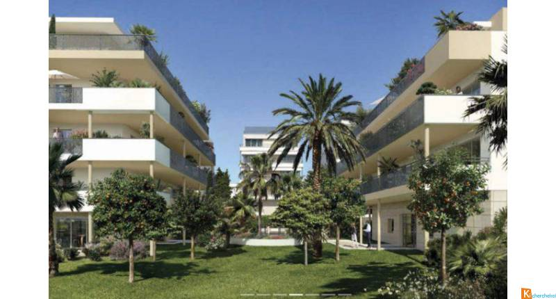 PALM RIVIERA - Cannes