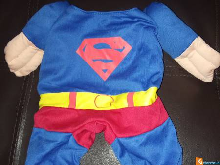 Costume Chat Superman