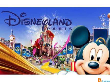 Place pour disneyland paris
