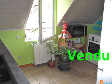 BEL APPARTEMENT AU CENTRE VILLE DE BAUME LES DAMES