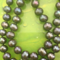 collier perles de culture Tahiti