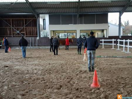 FORMATIONS PROFESSIONELLES EQUICOACHING