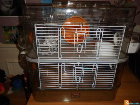 cage Rody 3 duo